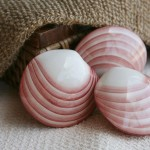 gallery-shells